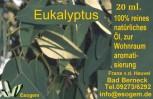 Eukalyptusöl 20 ml